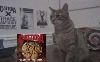 Conoce a Cattera, banda de metal con un gatito como vocalista
